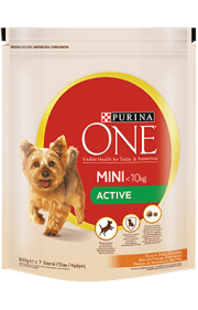 Raá∆o seca PURINA ONE Mini Active