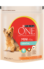 PURINA ONE MINI < 10kg Dental Rico em Frango com Arroz