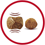 Purina-ONE-Mini-Active-croquetes-tenros