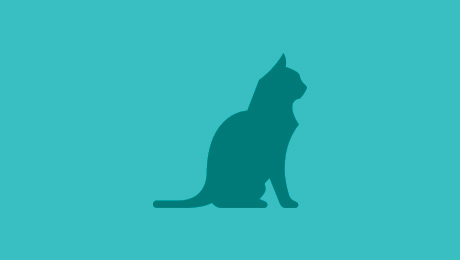 Green cat icon