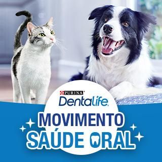 Movimento de saúde oral Purina Dentalife