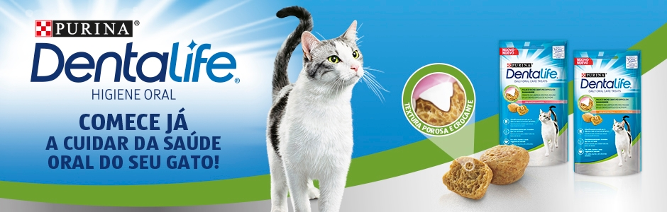 Higiene oral para gatos - Purina Dentalife